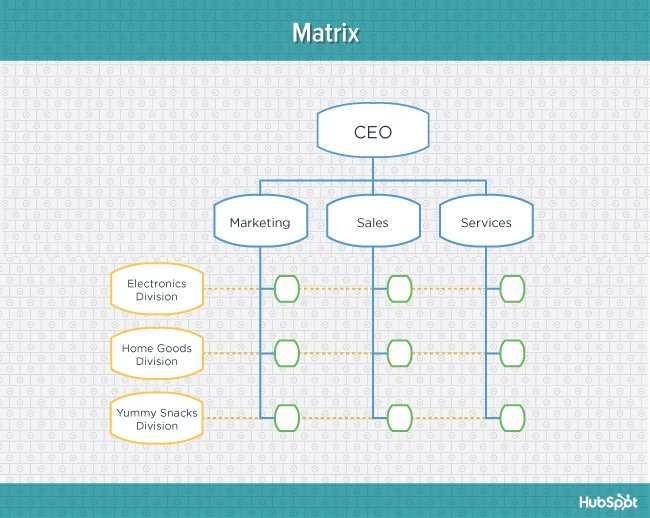 Teal diagram of matrix organizational structure
